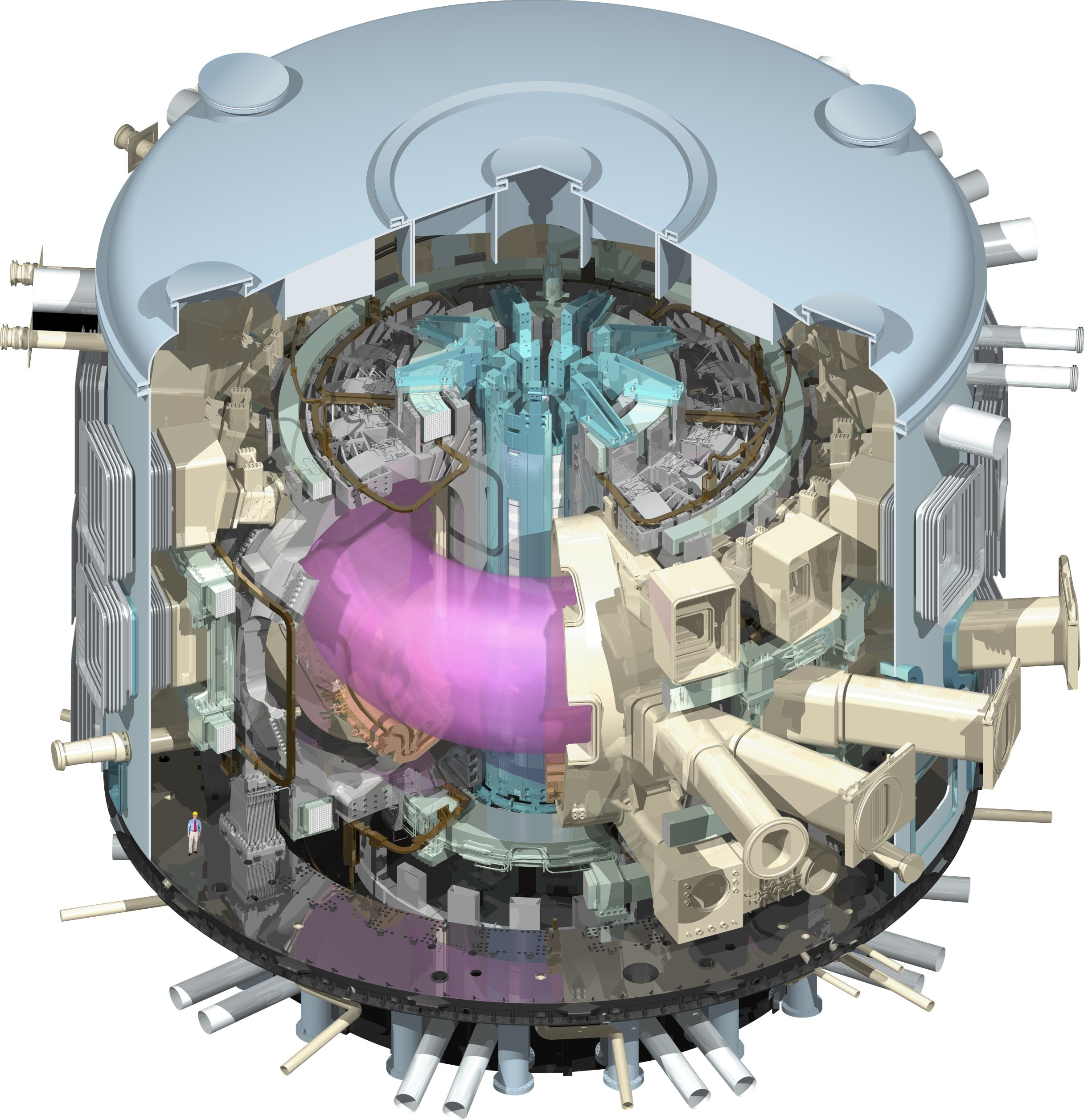 tokamak_cut_away